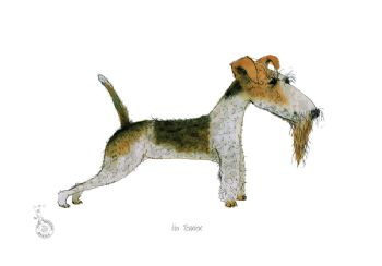 Fun Dog Cartoon Print - Fox Terrier